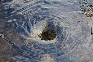 English: A small whirlpool in a pond