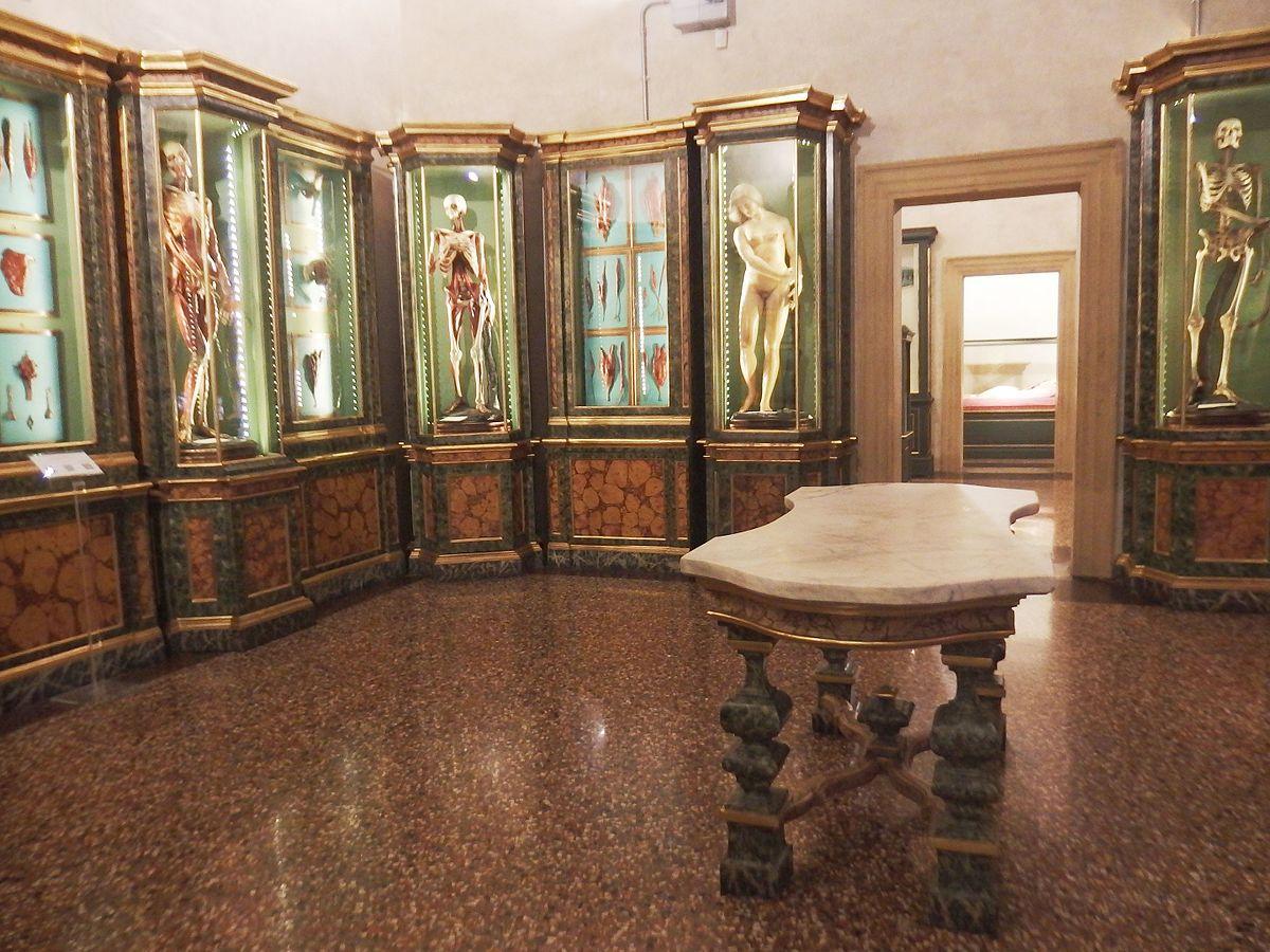 Museo di palazzo Poggi  Wikipedia