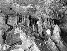 Great Onyx Cave  Wikipedia