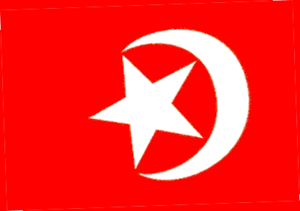 Flag of the Nation of Islam. The flag is under...