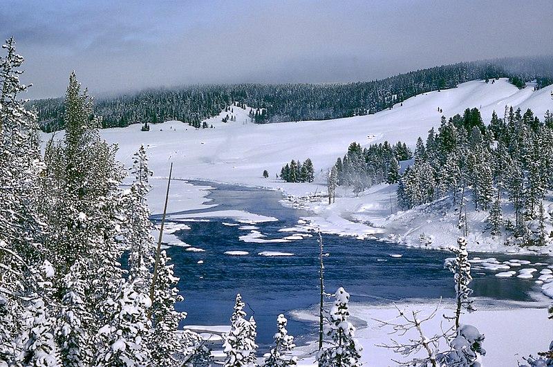 Tossers - Yellowstone