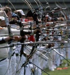 diagram wild turkey archery shooting [ 1200 x 779 Pixel ]