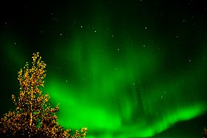 Aurora Borealis (231574247)
