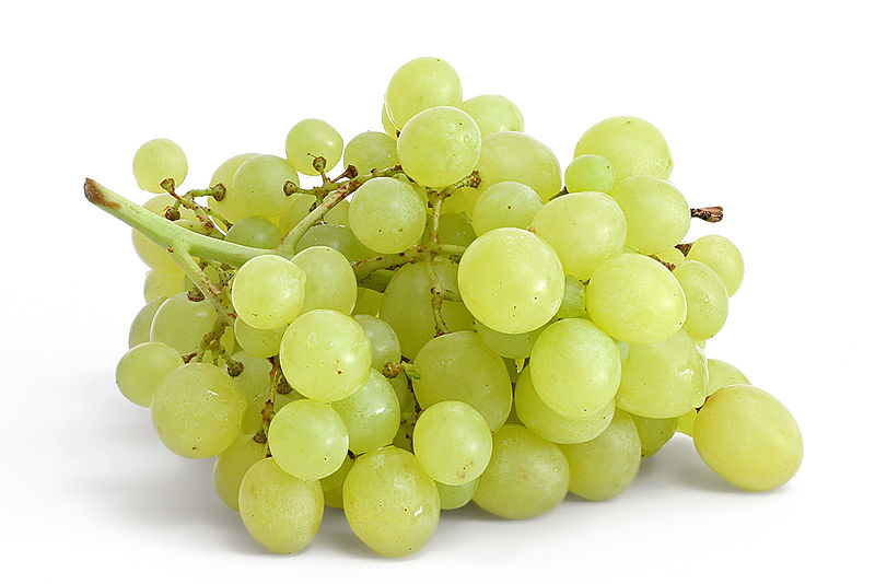 File:Table grapes on white.jpg