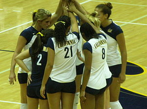 The Cal women's volleyball team during a match...