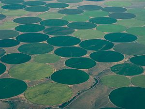 English: Crop circles along the Columbia, Wash...