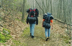 English: Two campers with gear hiking through ...
