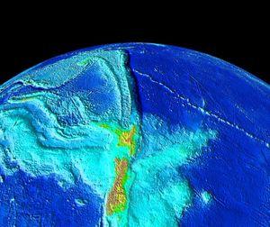 O oceano Pacæico