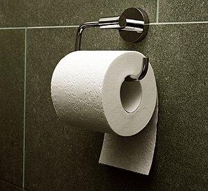 """English: Toilet paper, orientation """"under..."""