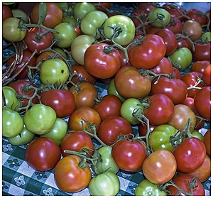 A table of tomatos at Chicago's Green City Market.