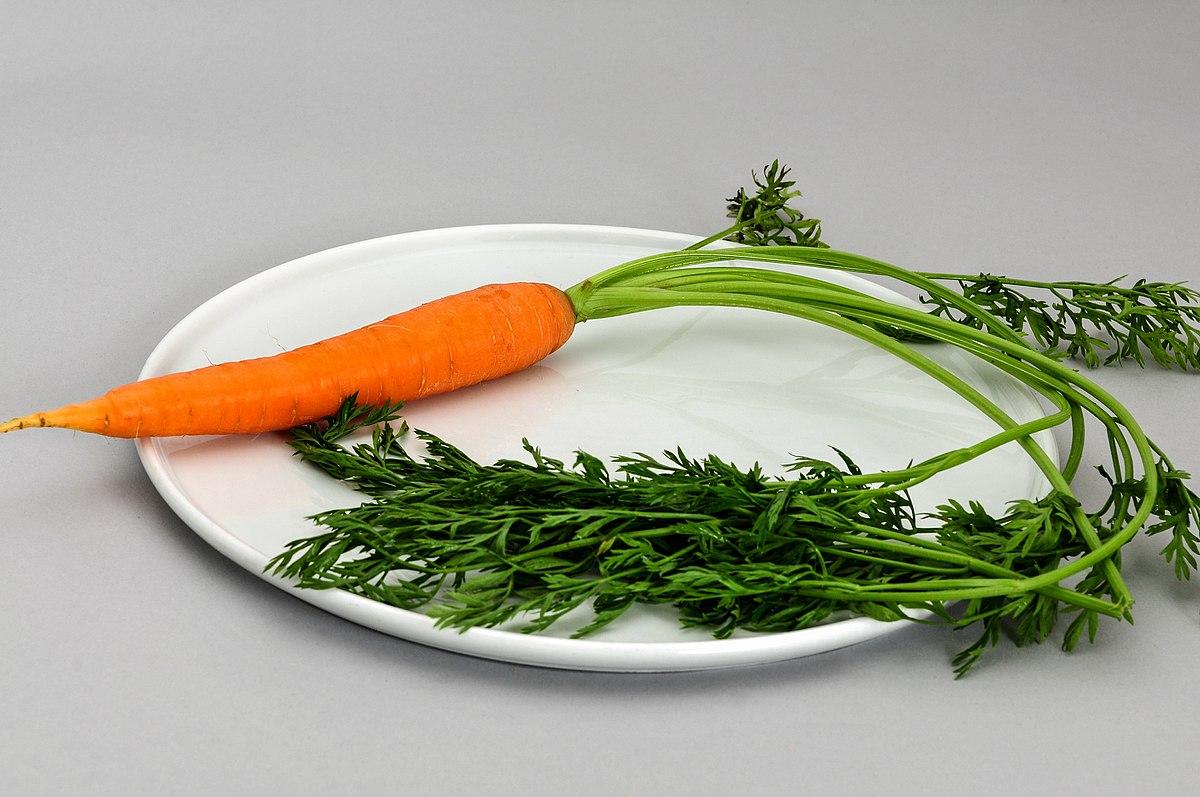 Carrot Wikipedia