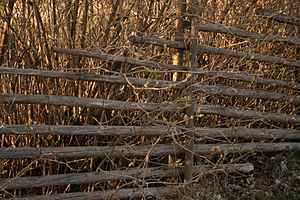 Wooden fence in Halmstad, Sweden.