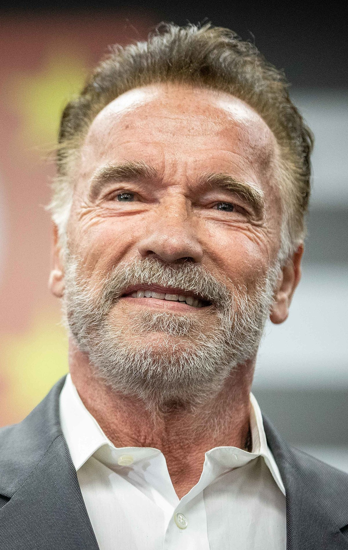Plus Gros Crash D'avion Du Monde : crash, d'avion, monde, Arnold, Schwarzenegger, Wikipédia