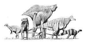 Various ornithopod dinosaurs and one heterodon...