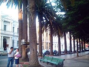 Square Park of Curico, Chile(Plaza de Armas de...