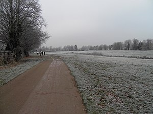 English: A frosty morning in Cox's Meadow Part...