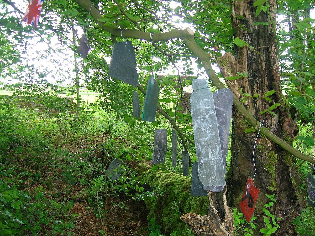 Wish tree  Wikipedia