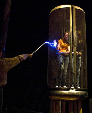 A Faraday cage in operation: the woman inside ...