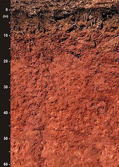 List of US state soils  Wikipedia