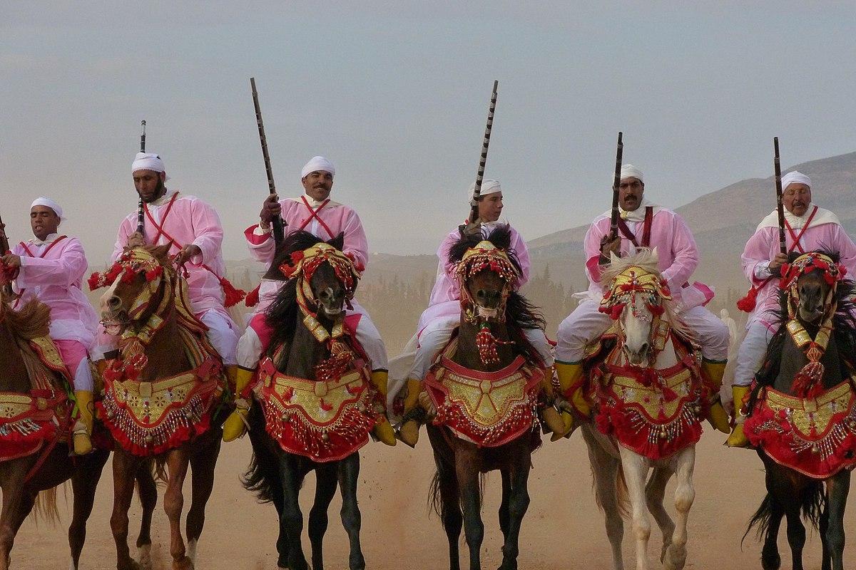 Cheval au Maroc  Wikipdia