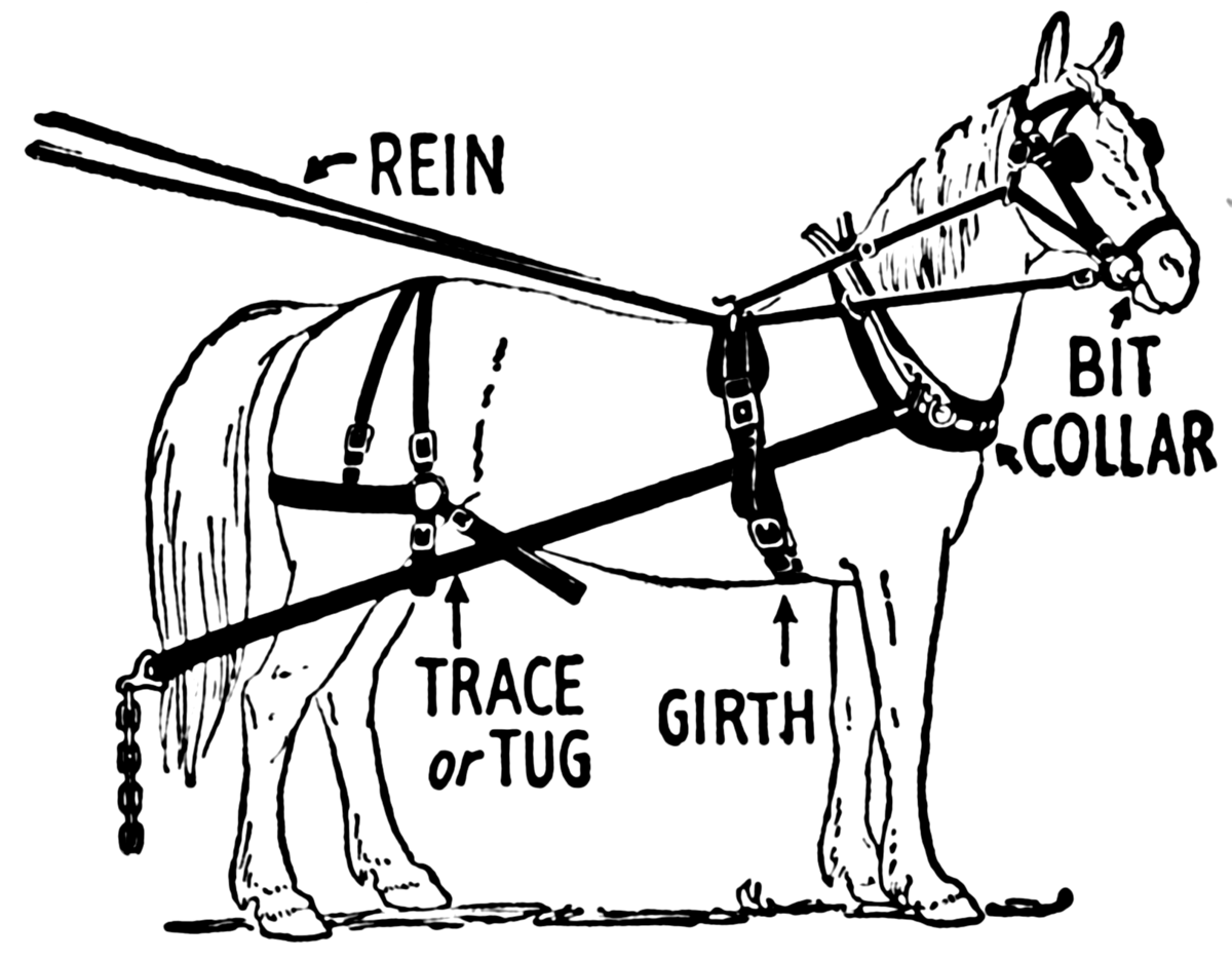 hight resolution of horse cart diagram