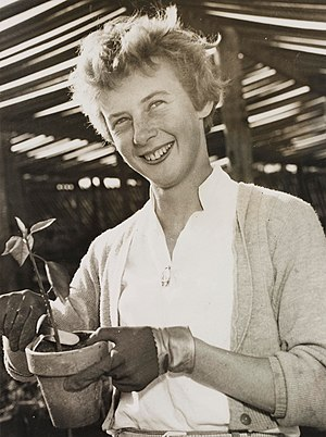 English: Betty Cuthbert, c. 1950s, by Ted Hood...