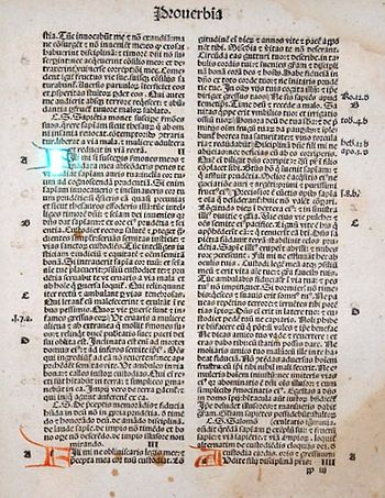Incunabulum Blackletter Bible 1497