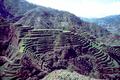 rice terracesdi - filipina