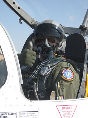 Author (User:BQZip01) in a jet wearing appropr...