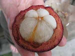 fruit of Garcinia mangostana taken in Bali