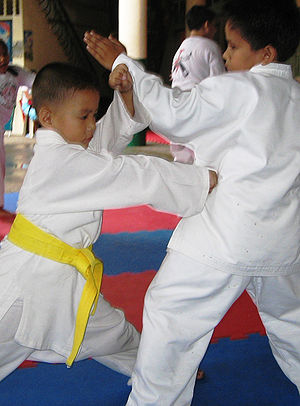 English: JJS Karate kids during training at Ja...