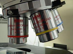 English: binocular microscope Français : Loupe...