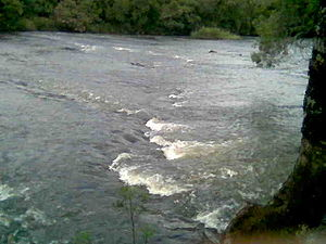 Descrição: Rio Piquiri.
