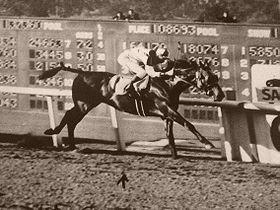Seabiscuit vince la Santa Anita Handicap - 2 marzo 1940
