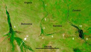 Cuando-Linyanti-Chobe river system in the regi...
