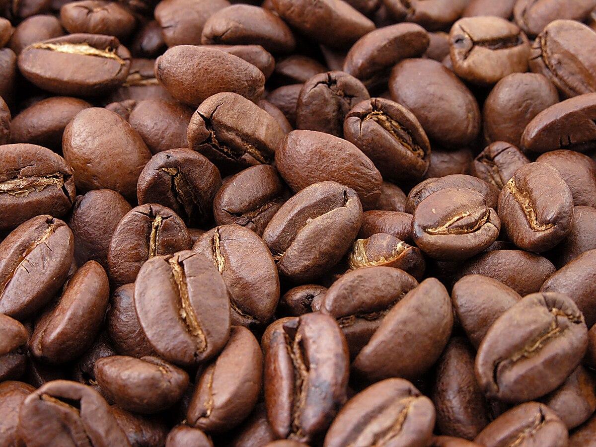 Coffee bean  Wikipedia