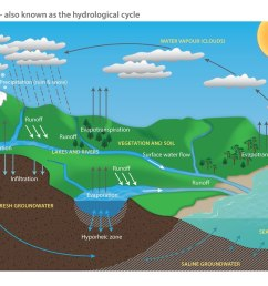 file water cycle diagram pdf [ 1280 x 905 Pixel ]