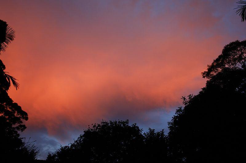 File:A Winter Sky, Sunrise, My Backyard, Sydney Australia (3566183325).jpg