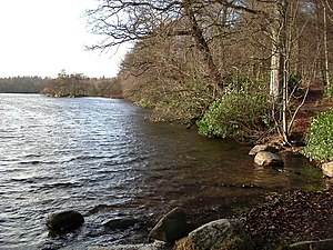 Bolam Lake on a mild Winter day Looking West f...
