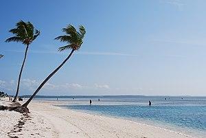 English: A beach on Coco Cay, an island leased...