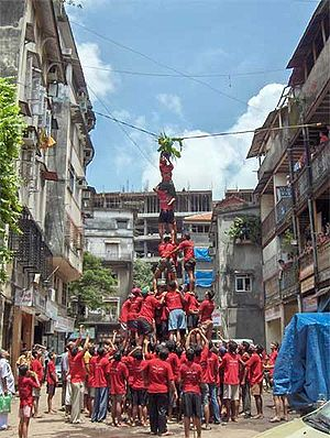 Govinda celebrations during the Krishna Janmaa...