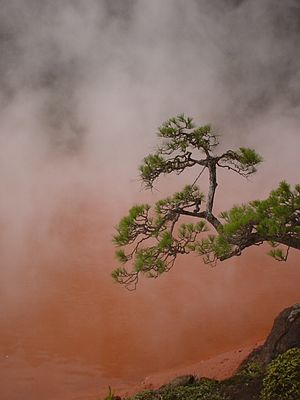 """Blood Pond"" hot spring in Beppu, Japan"