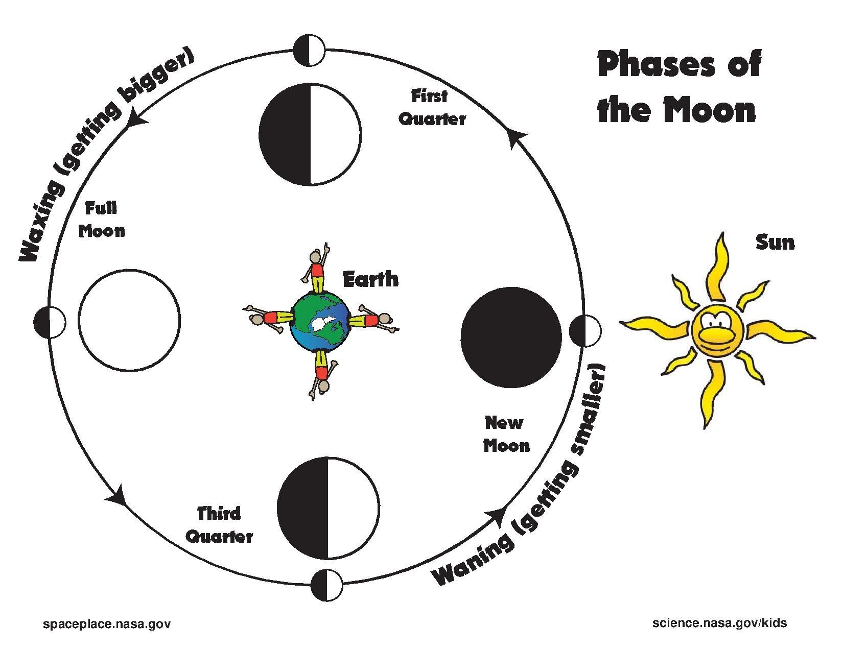 File Oreo Moon Phases