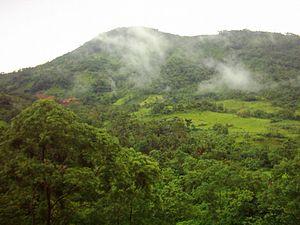 Pegunungan Meratus  Wikipedia bahasa Indonesia