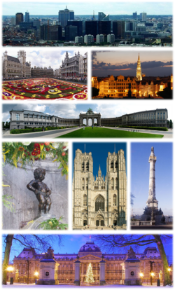 A collage with several views of Brussels, Top: View of the Northern Quarter business district, 2nd left: Floral carpet event in the Grand Place, 2nd right: Brussels City Hall and Mont des Arts area, 3rd: Cinquantenaire Park, 4th left: Manneken Pis, 4th middle: St. Michael and St. Gudula Cathedral, 4th right: Congress Column, Bottom: Royal Palace of Brussels