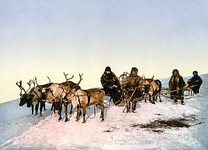 English: Traveling by reindeer, Arkhangelsk, R...