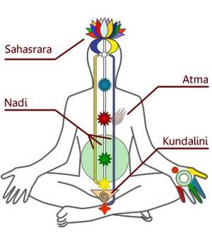 English: Diagram of chakras and Kundalini in a...
