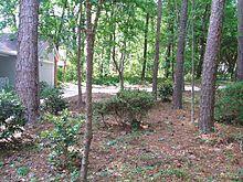 natural landscaping - wikipedia