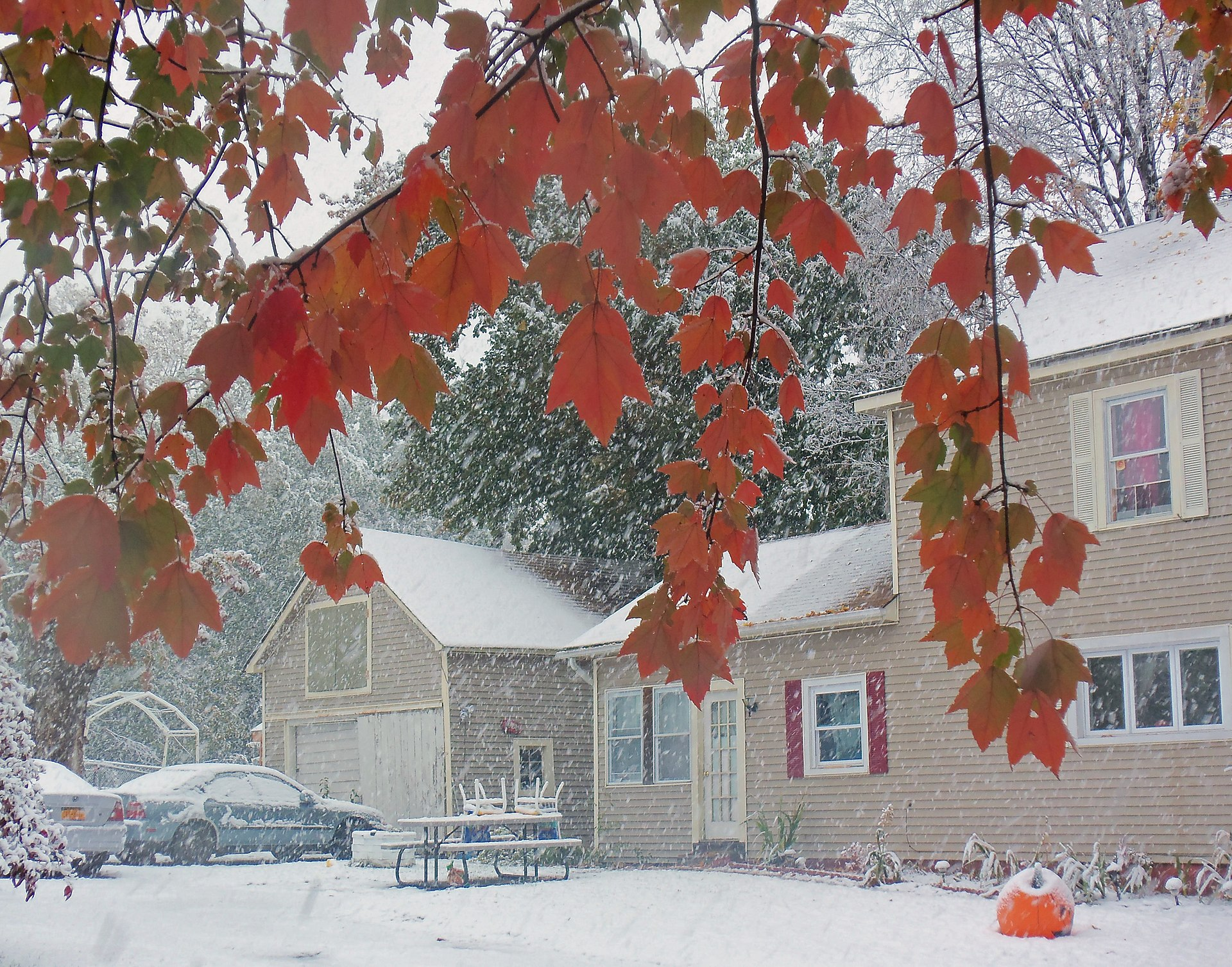 Snow Falling Gif Wallpaper 2011 Halloween Nor Easter Wikipedia