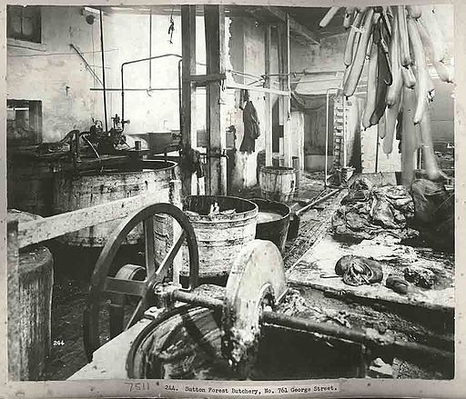 A Sydney butchers, 1900 (3100789785)